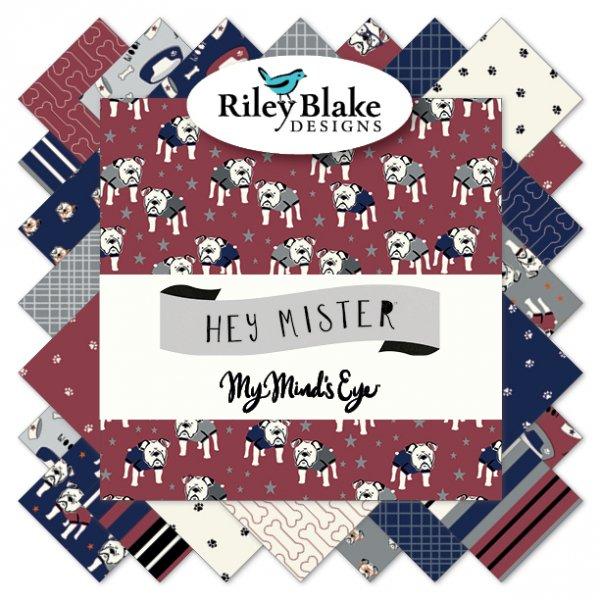 Hey Mister by Riley Blake Designs