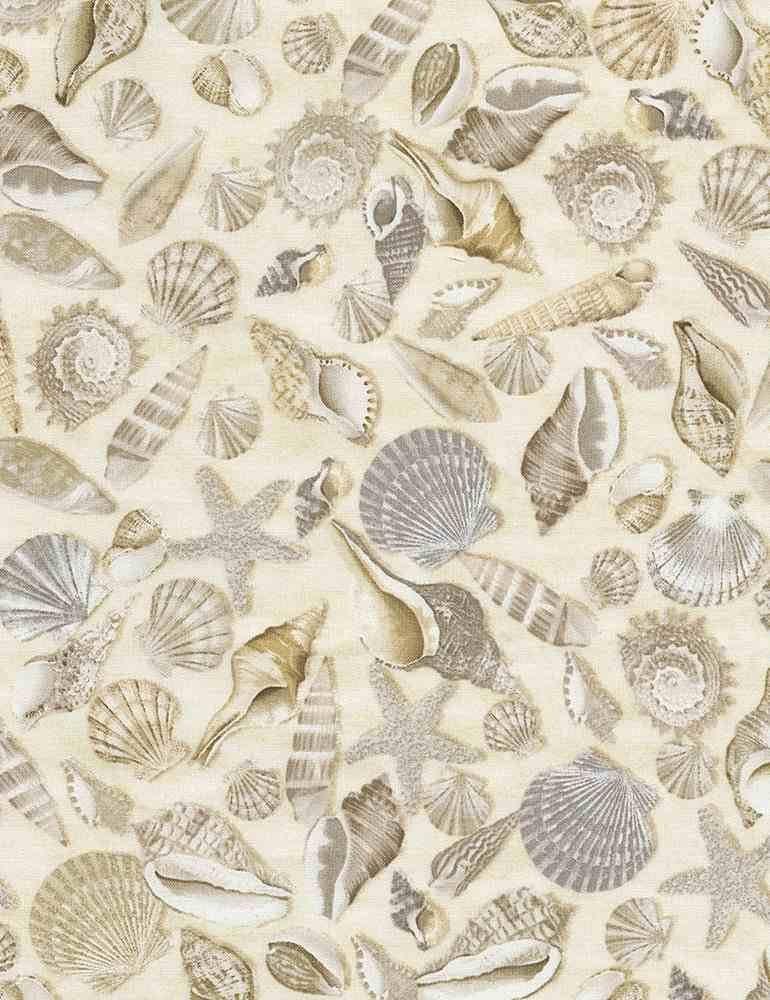 Beach Shells Allover