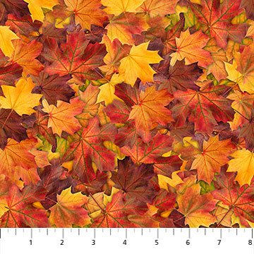 The View From Here Autumn Warmth