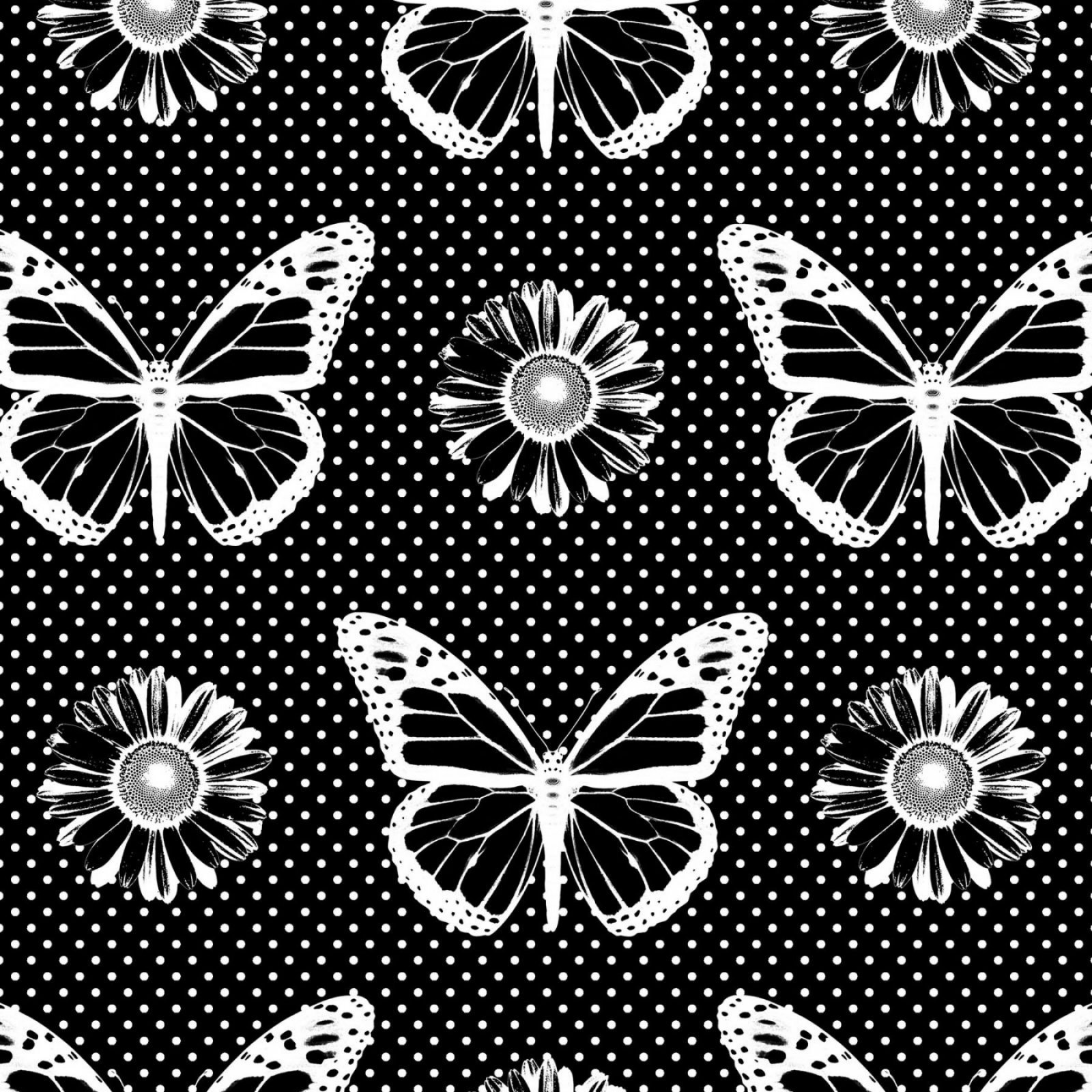 Patrick Lose-Black/White Favorites 64744 Black Butterflies