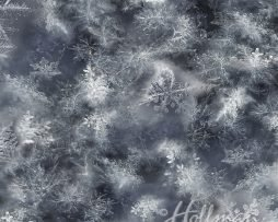 Q4458-313 PaynesGray Snowflake