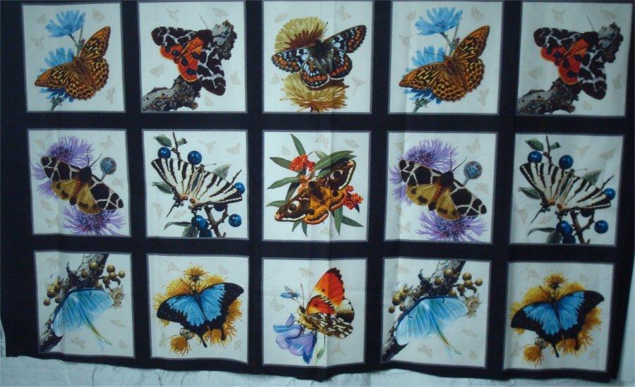 BUTTERFLIES AND MOTHS- BLACK PANEL BY ELIZABETH STUDIOS