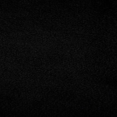 Shannon Fabrics - Cuddle 3 - Black
