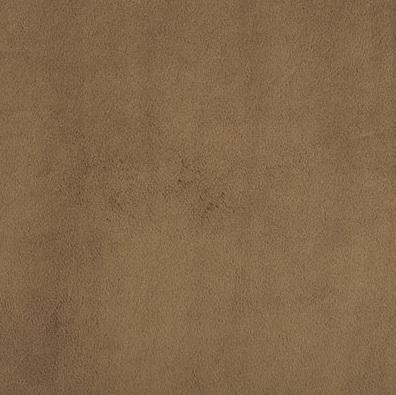 Shannon Fabrics - Cuddle 3 - Cappuccino