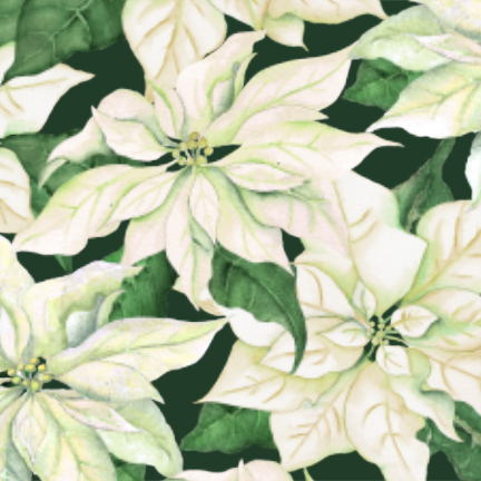 Christmas Joy Poinsettias Green