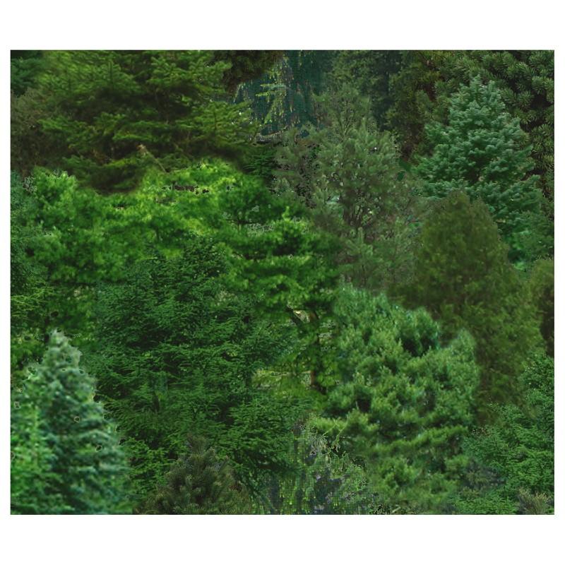 Elizabeth's Studio - Landscape Medley - ELS-176