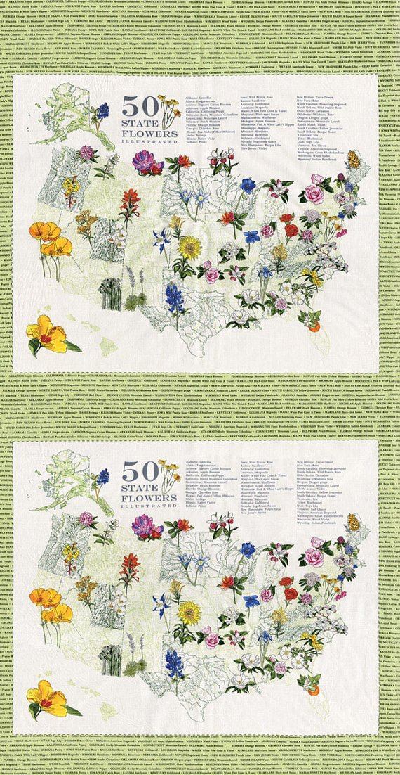 Moda - State Flowerscape - Map Panel
