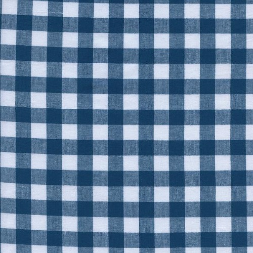 Cotton + Steel - Checkers Gingham (Teal 1/2)