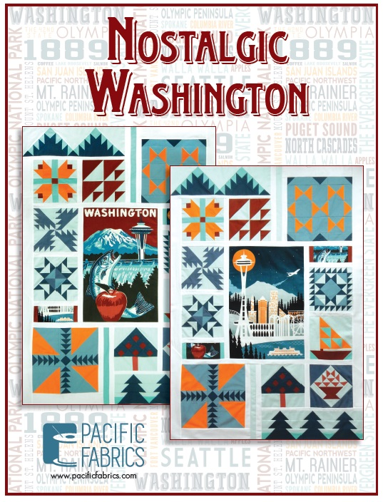 2017 Block of the Month - Nostalgic Washington Pattern & Panel