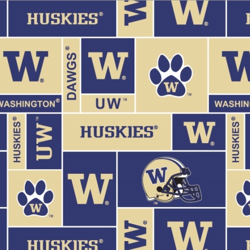 University of Washington Blocks Fleece