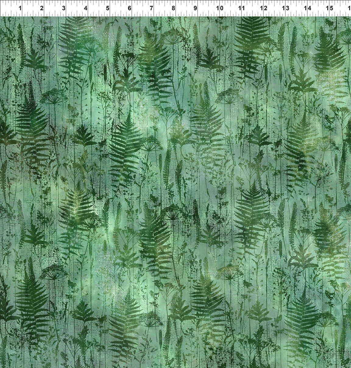 In the Beginning, Haven - Ferns Green