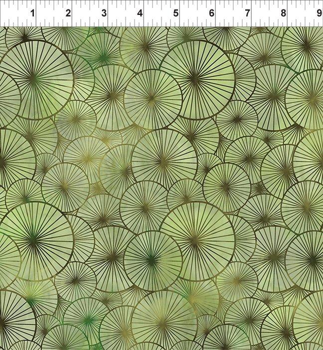In The Beginning, 8 Season, Umbrellas In Green