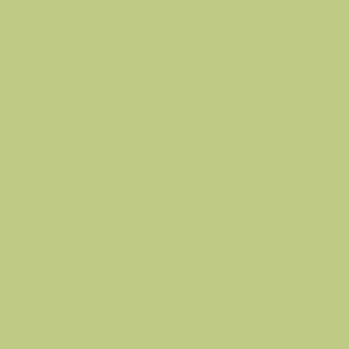 Riley Blake, Confetti Solid Grass