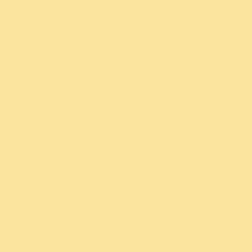 Basics Solids Confetti Cottons Color Sunshine
