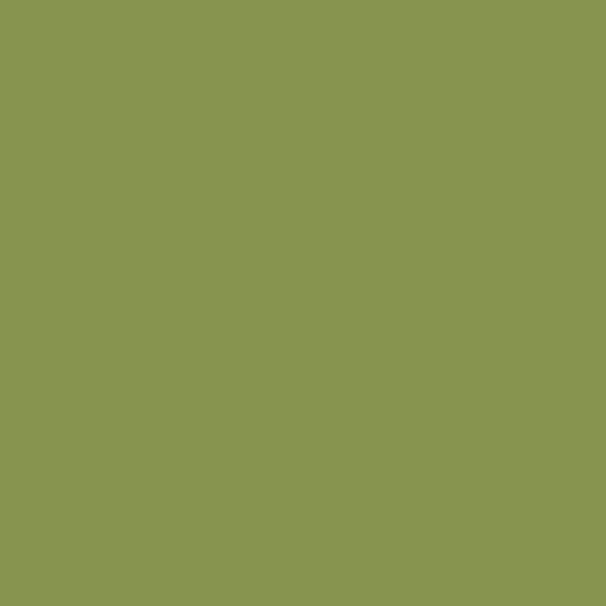 Basics Solids Confetti Cottons Color Treetop