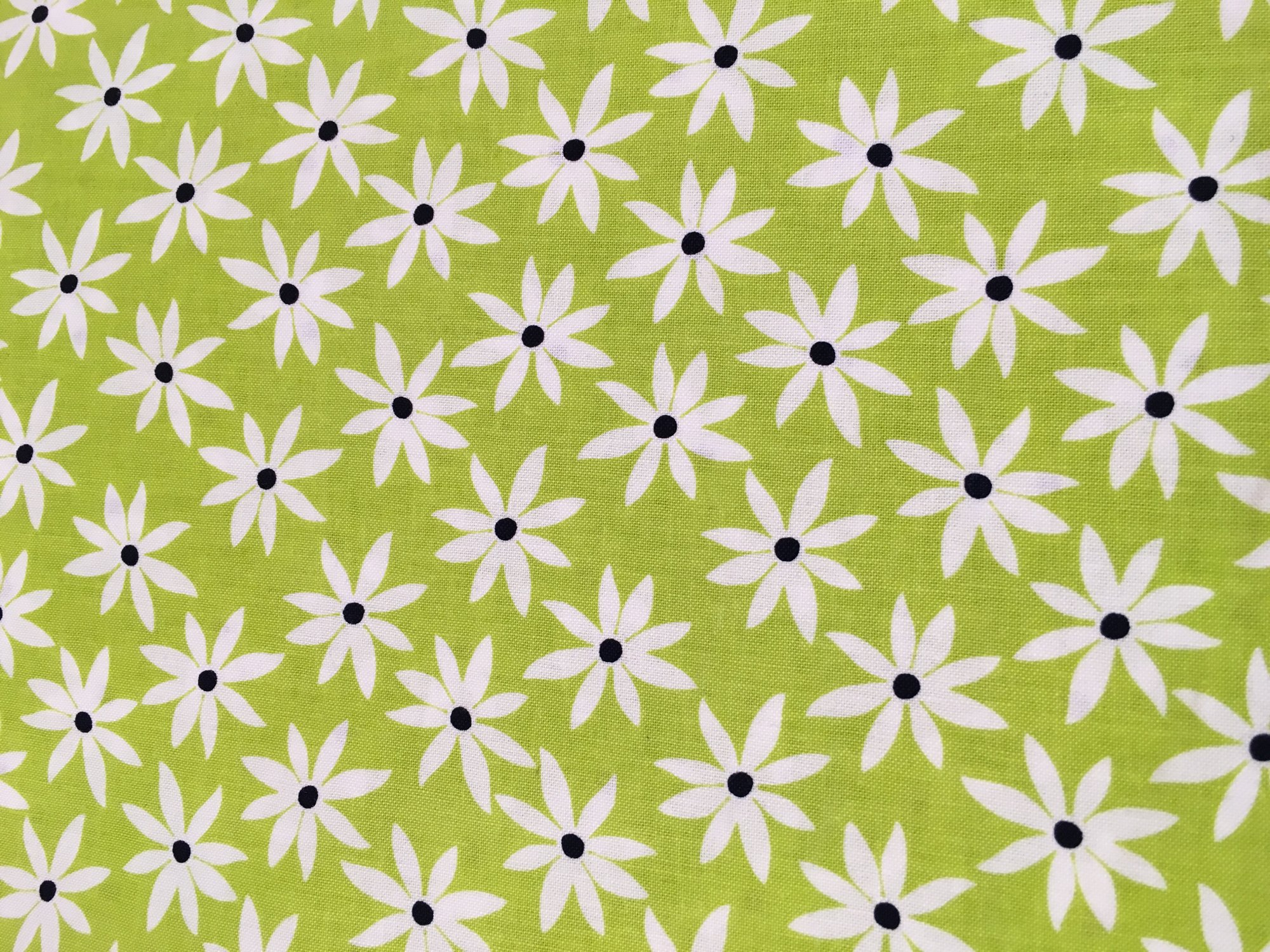 Citron Twist Green with white flowers