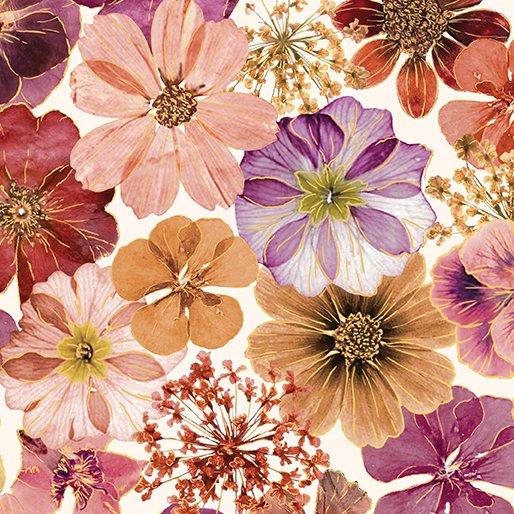 Floral Impressions Impressions Floral Cream/Magenta