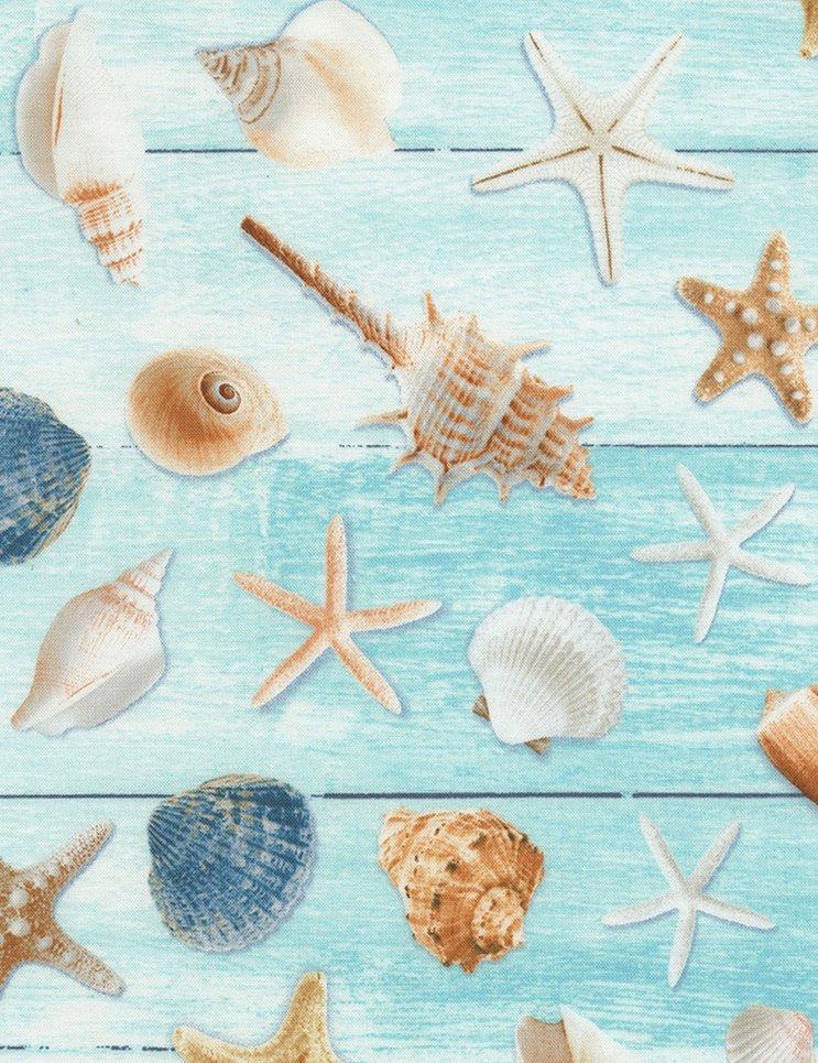 195 Aqua Seashells on wood