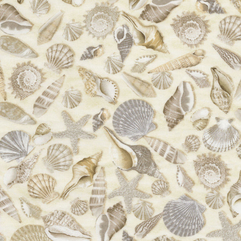 Beach Shells C5353-SHELLS Timeless Tresures