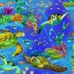 0120 Ocean Sea Turtles