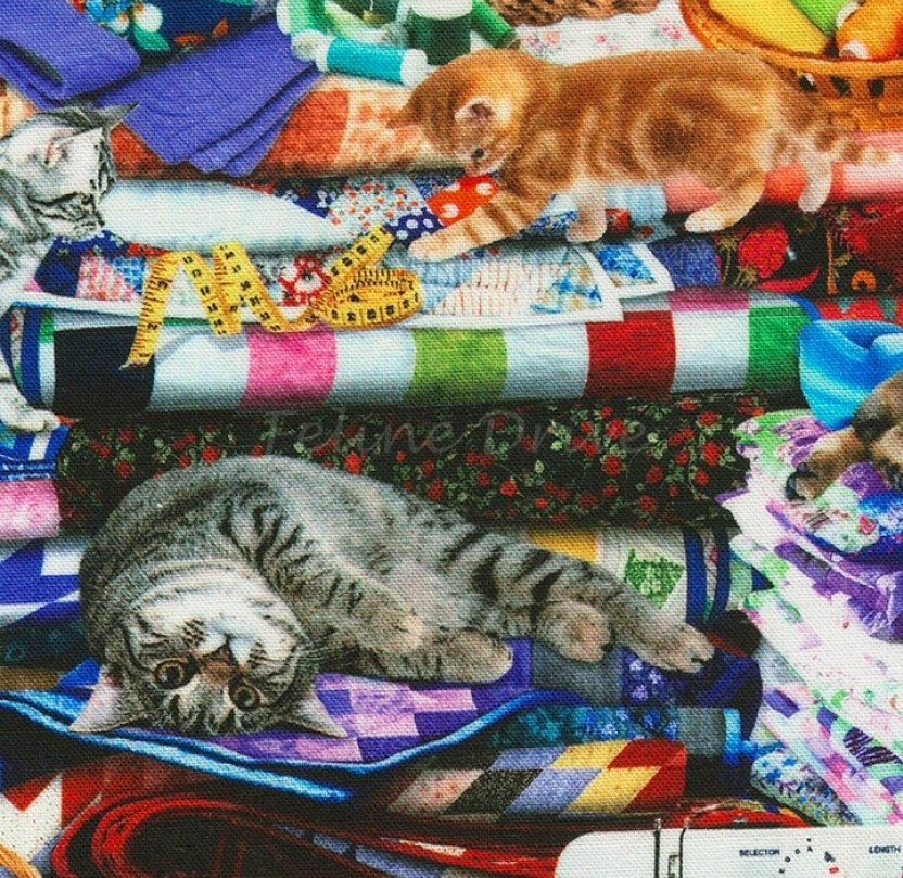 Timeless Treasures Cat CD6878 Multi