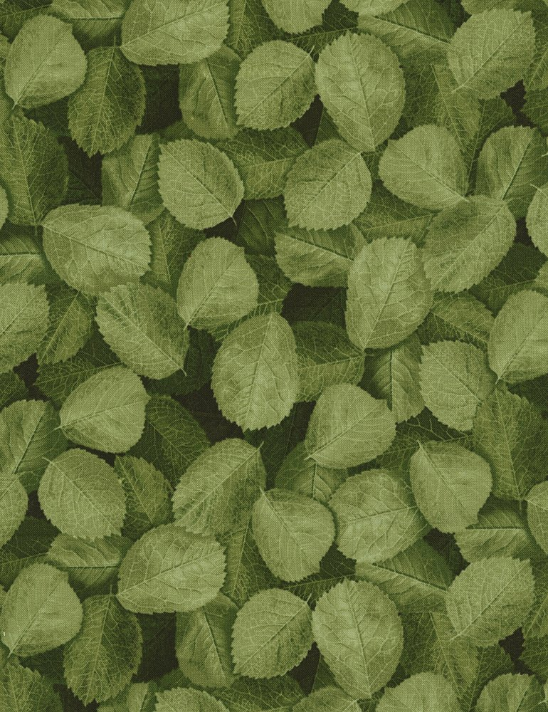 Packed Leaves Glamour-C5052-Green Timeless Treasures
