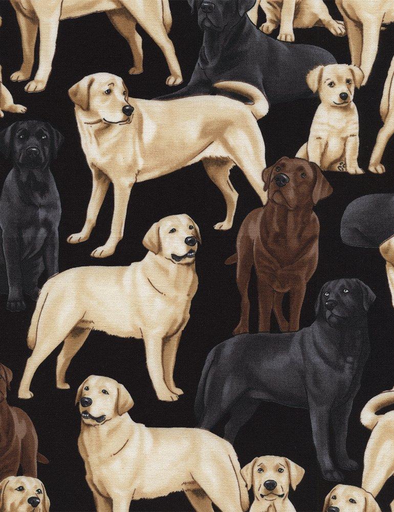Labradors GM-C3240-Black
