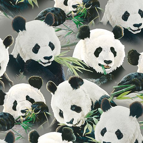 IMPERIAL PANDA PACKED PANDAS  24979 -K Quilting Treasures