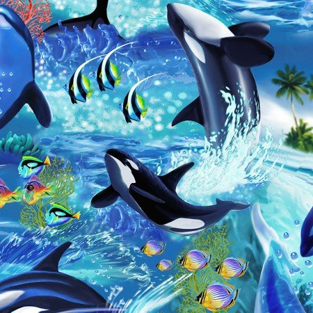 Killer Whales Wave C6152 - Timeless Treasures