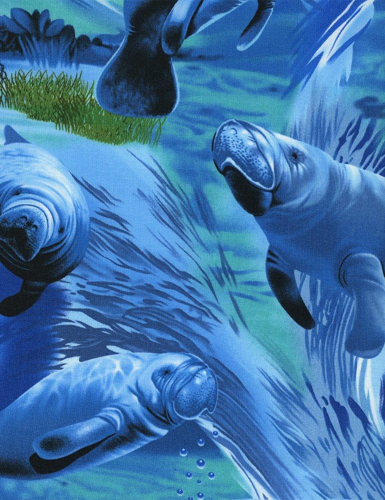 Manatee C1165 Blue Timeless Treasures