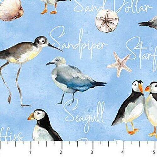 Atlantic Shore Birds  Northcott