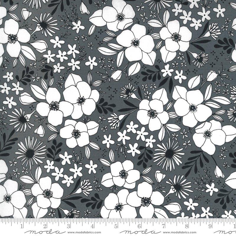 Graphite - Illustrations - 11503 14