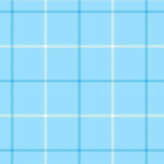 Light Blue Large Plaid - Local Flannel - Studio E - 3774-11