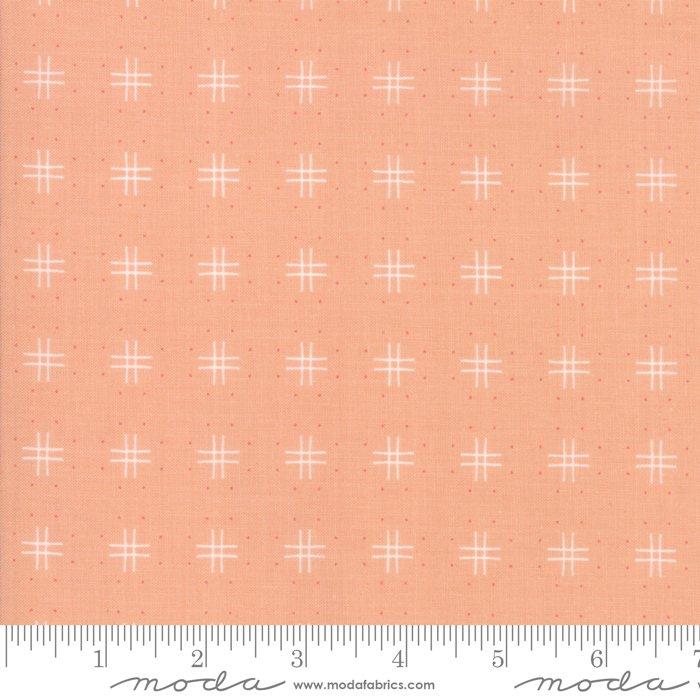 Tangerine - Lollipop Garden - 5083 18