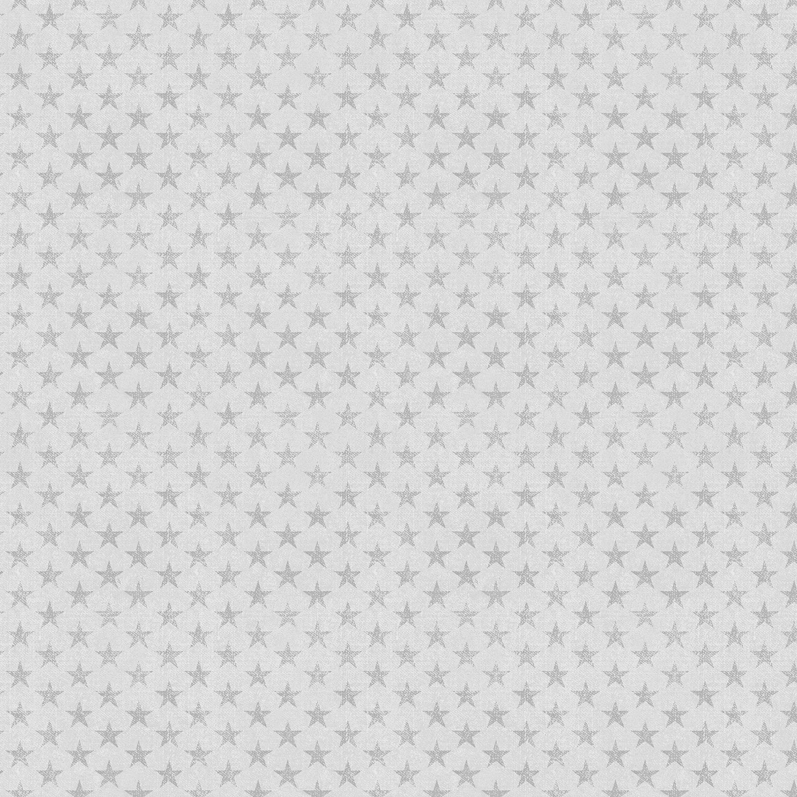 Light Grey Tonal Stars - American Rustic - BEN6336-08