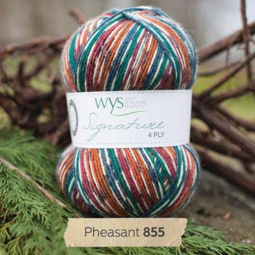 Signature 4ply Country Birds Collection by the West Yorkshire Spinners