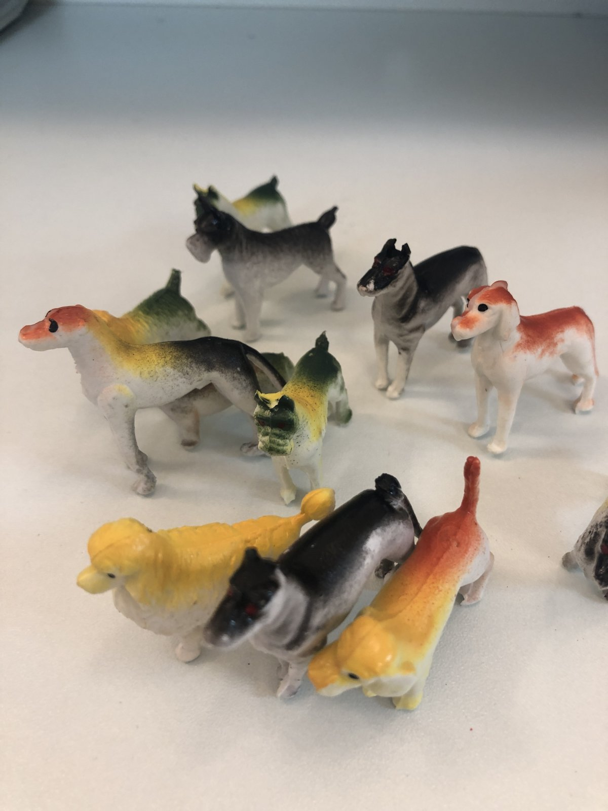 Assorted Dogs 12 pc set