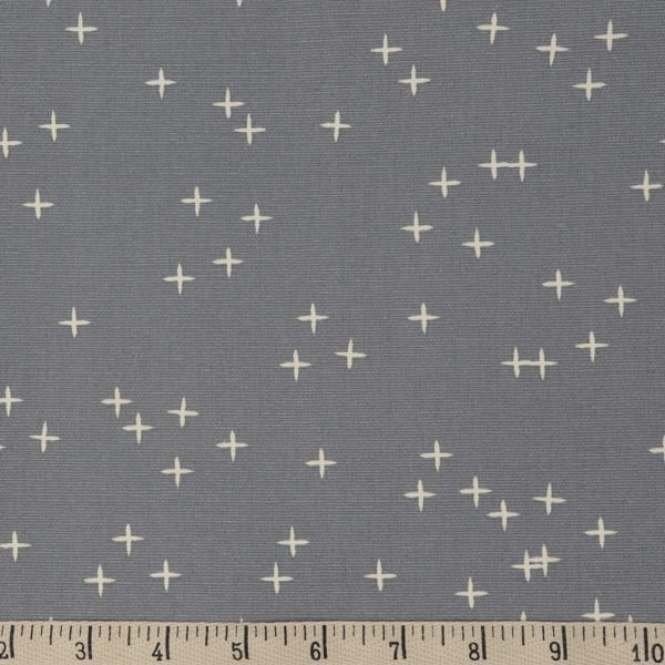 29 REMNANT - Wink CANVAS in Gray from Birch Organic Fabrics