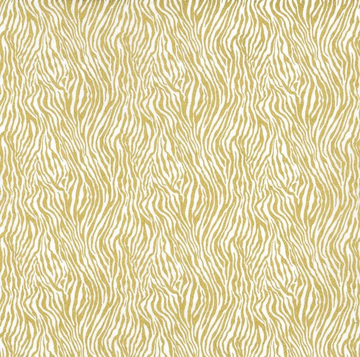 CM8274 GOLD D MINI ZEBRA STRIPE for Michael Miller Fabrics. 100% cotton 43 wide