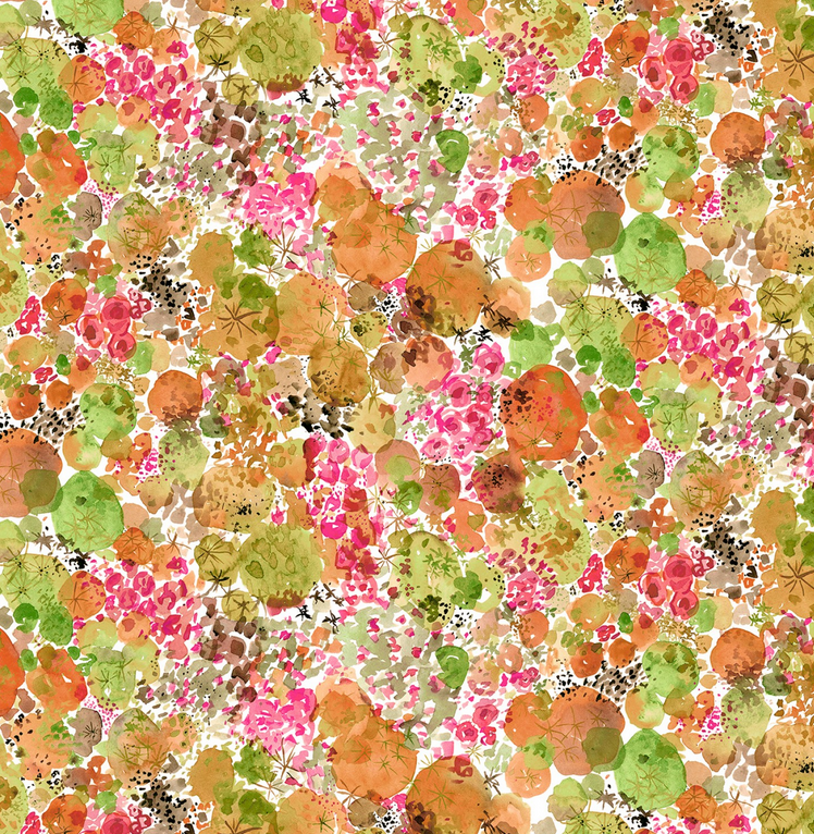 50866 3 Curio by Betsy Olmsted for Windham Fabrics. 100% cotton 43 wide
