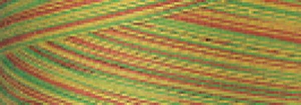 SM010 Citrus Variegated Signature 40wt Cotton Thread 700yd Mini