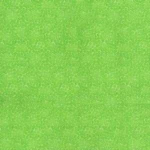 6455 Lime Candy Dots 108 Wide by Blank Quilting