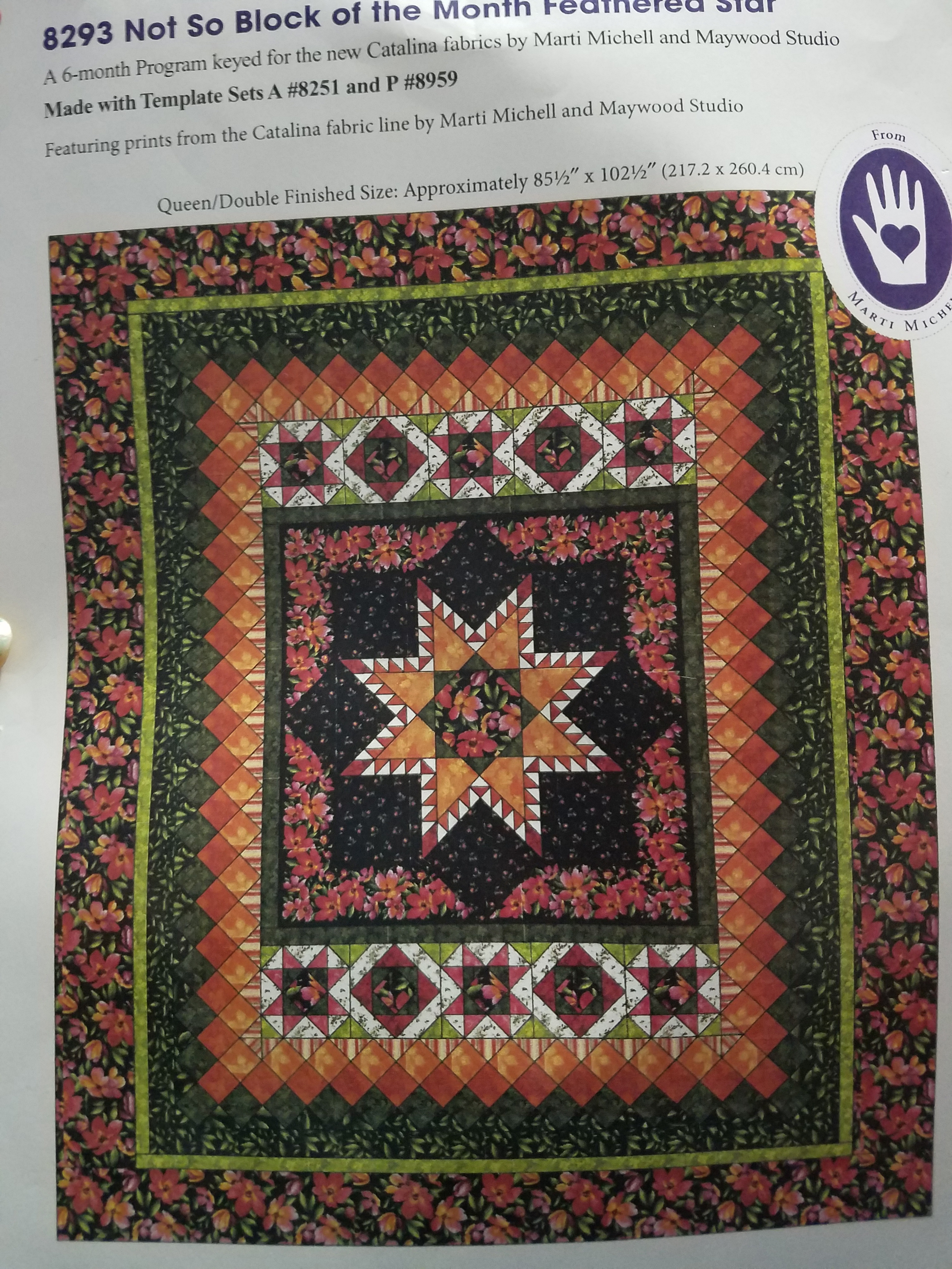 Not so Block of the Month Feathered Star Kit