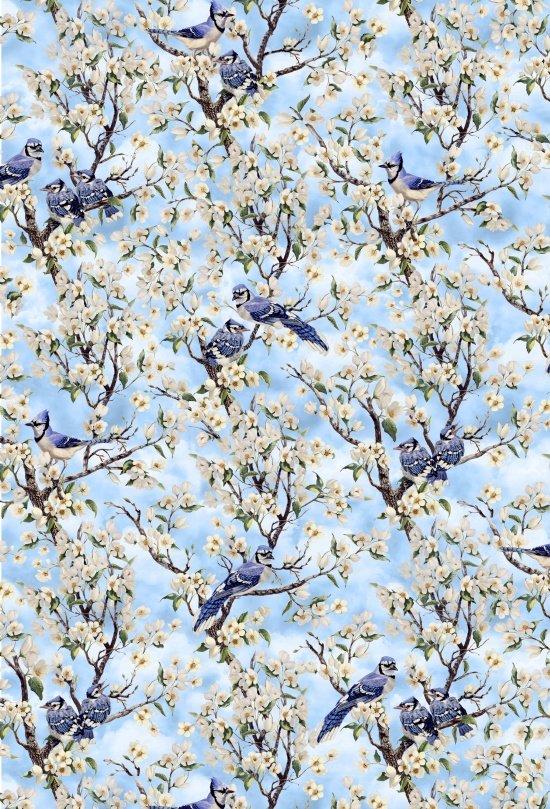 Birds of a Feather Blue Jays