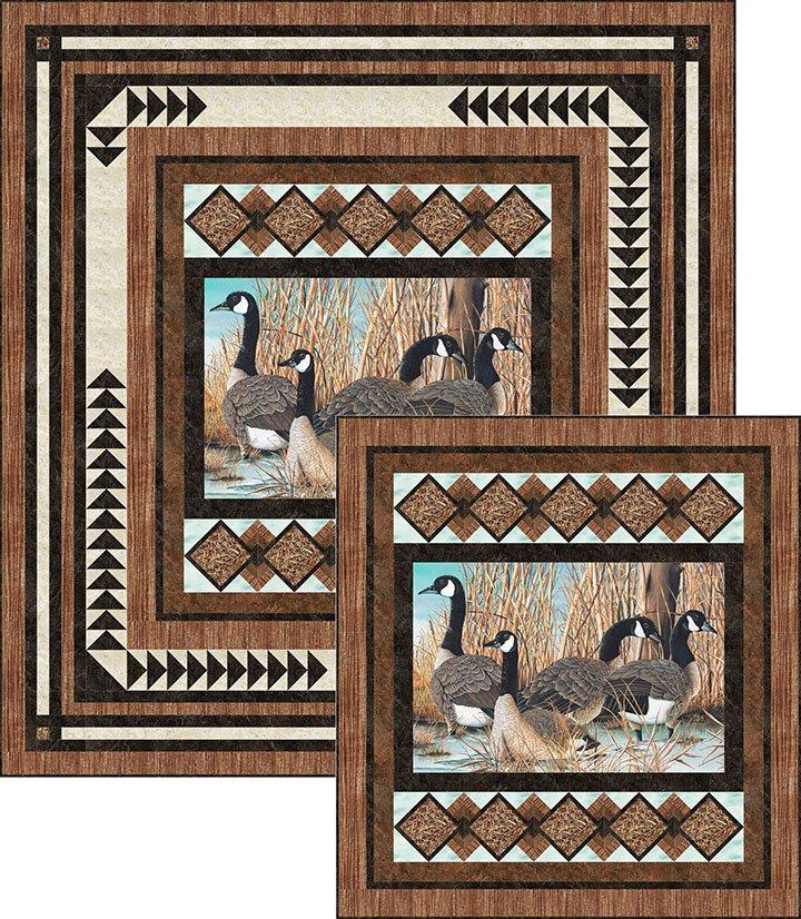 Picture This - Canada Goose