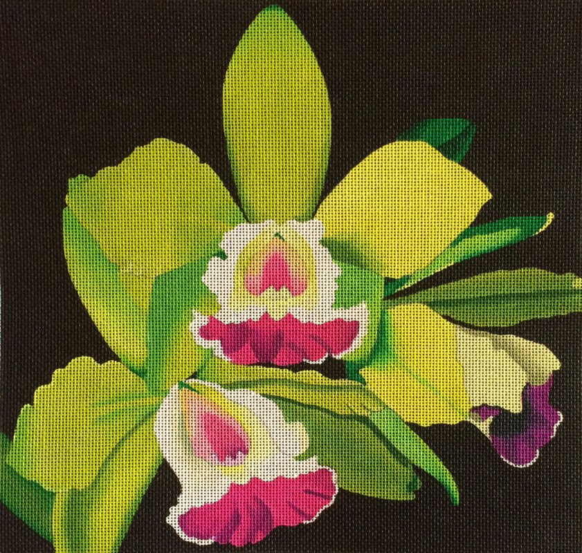 DH3881 - Green Orchids