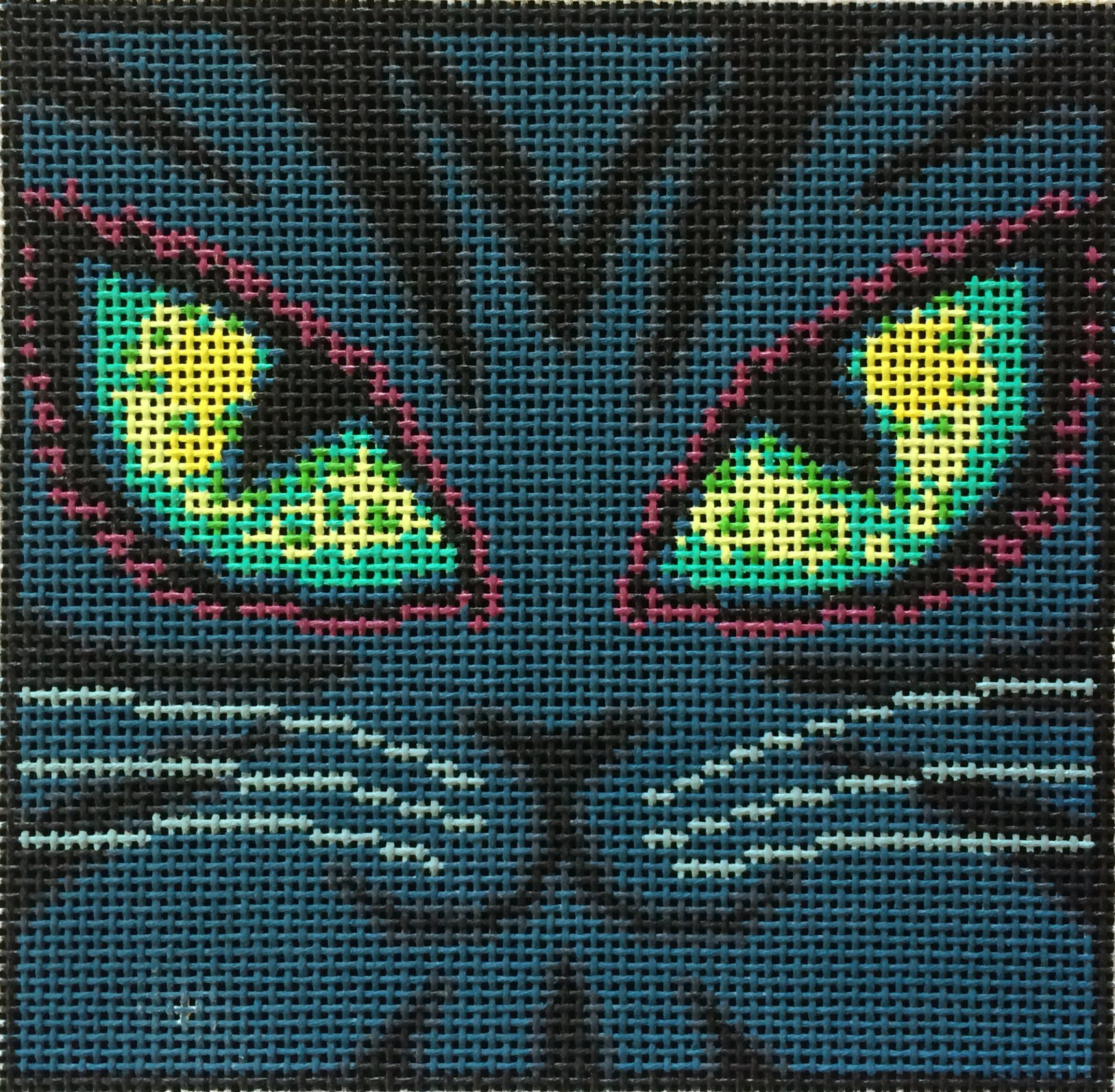 DH3897 - Midnite the Cat