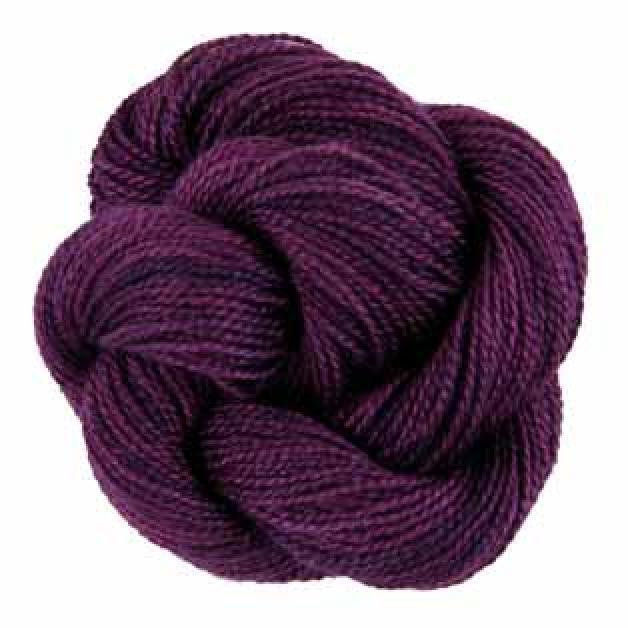 340 - Iris