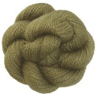 518 - Lichen