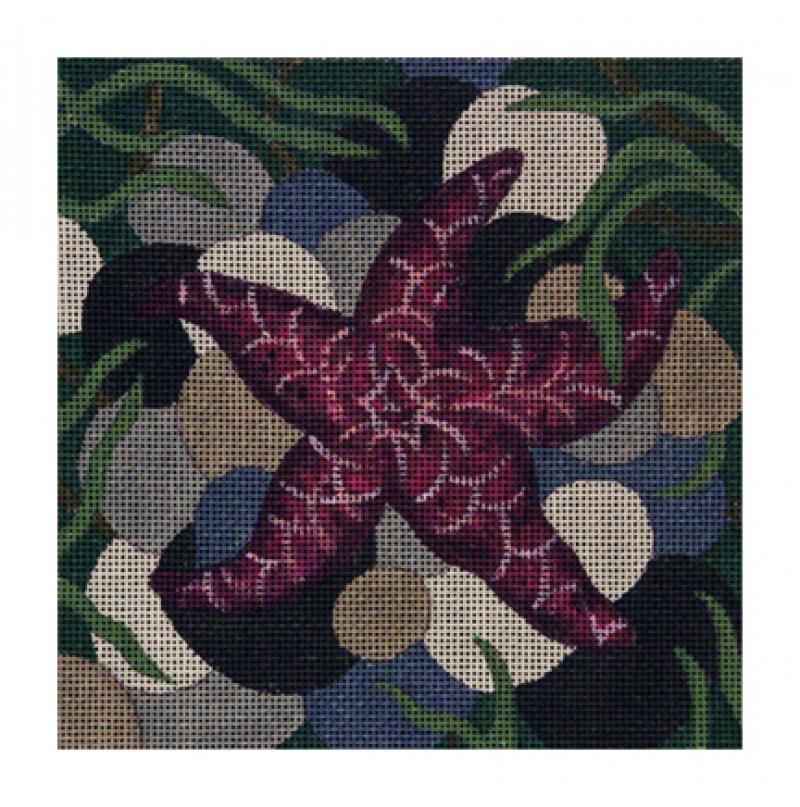 CL3600 - Purple Starfish